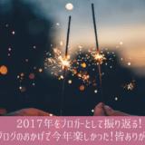 2017年の振り返り。ブログのおかげで楽しい年でした、ありがとう。