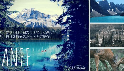 ツアーなしでも行けるバンフの観光スポットを紹介|モレーン湖・レイクルイーズ