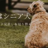 愛犬のシニアフードへの切り替え時期 良いドッグフードの見分け方